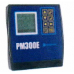 PM308